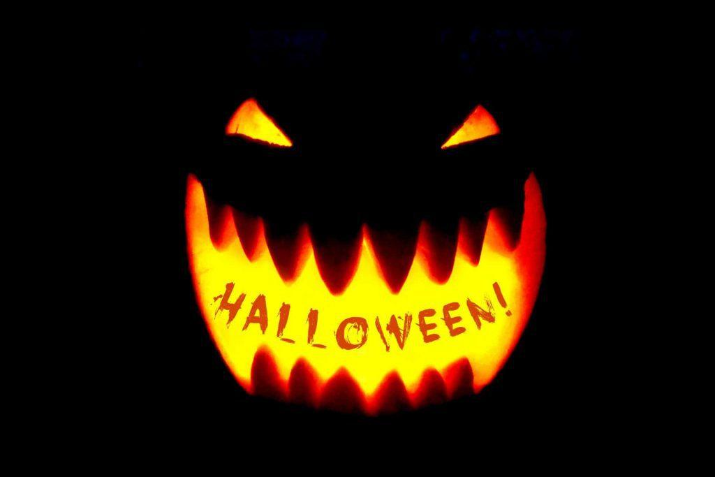 Halloween q&a dansk