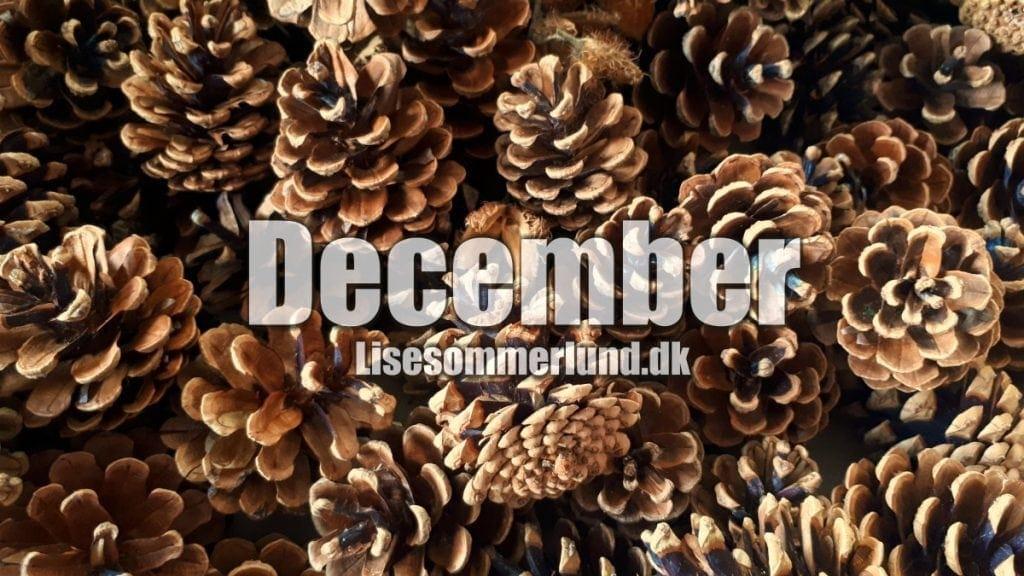 Dét her får du på bloggen i December + mit forhold til julepynt