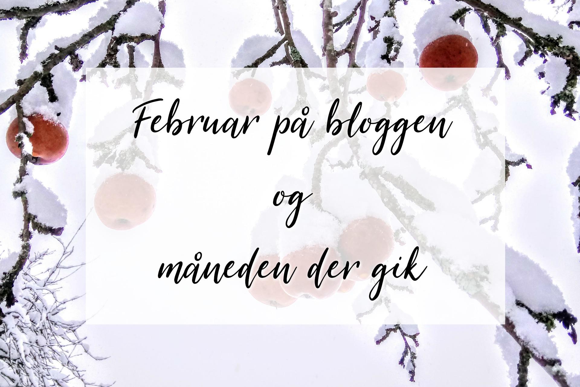 februar-maaned-paa-bloggen-lidt-maaneden-gik