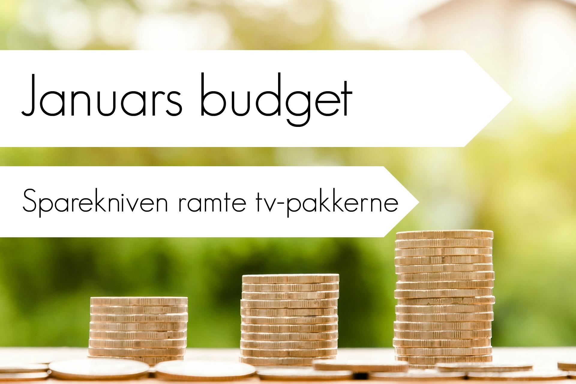 januars-budget-her-sparede-vi-penge