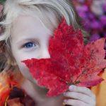 Budgetvenlig familievenlig halloween fest