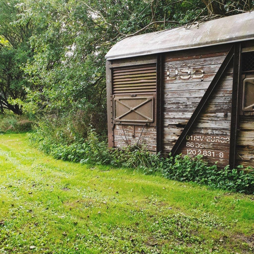 Græs-udendørs-gammel-togvogn