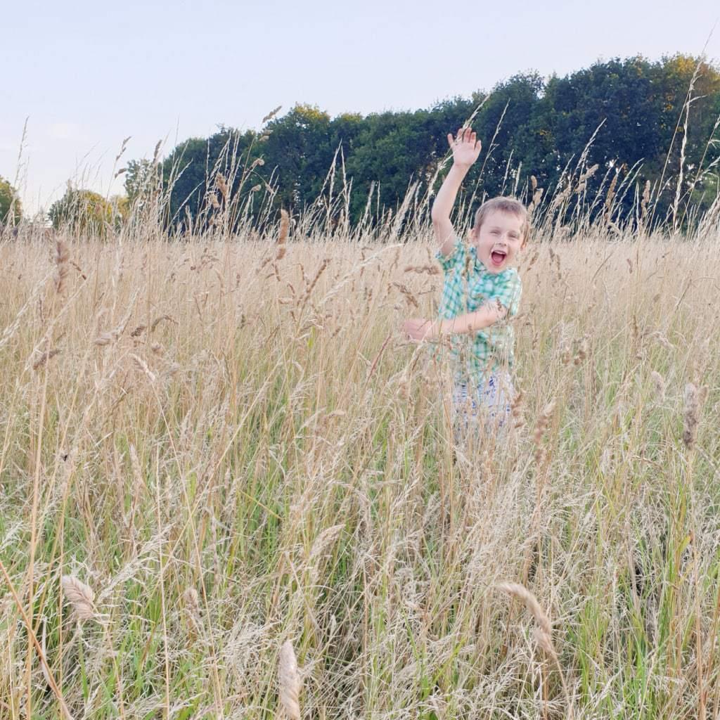 Glad dreng leger i højt græs i solnedgang i Sigerslev på stevns